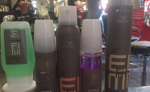 Wella and Sebastian Products at Crimson Hair Studio